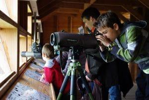 animation observatoire
